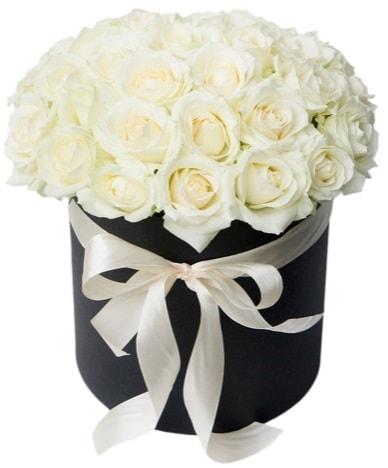 41 adet beyaz gül kutuda söz  İstanbul Kadıköy çiçek satışı  süper görüntü