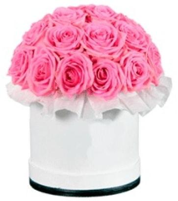 özel kutuda 20 adet pembe gül  İstanbul Kadıköy çiçek gönderme sitemiz güvenlidir
