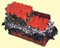 İstanbul Kadıköy çiçekçi telefonları  Sandikta 13 adet güller